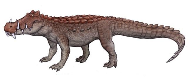 c-kaprosuchus