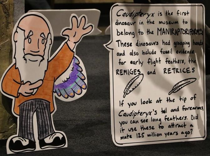 darwin-explains