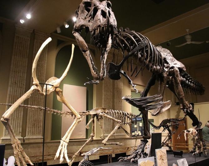 kenosha-t-rex2