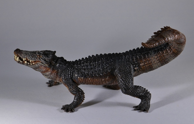 papo-kaprosuchus-4