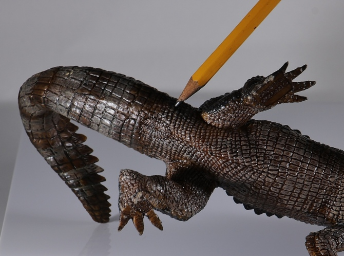 papo-kaprosuchus-cloaca