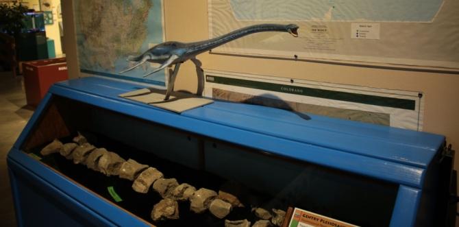pleisiosaur