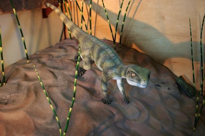 protosuchus-model