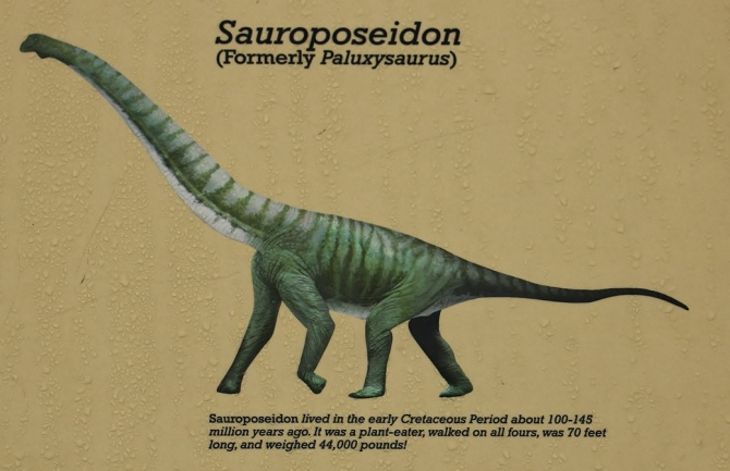 sauroposeiden