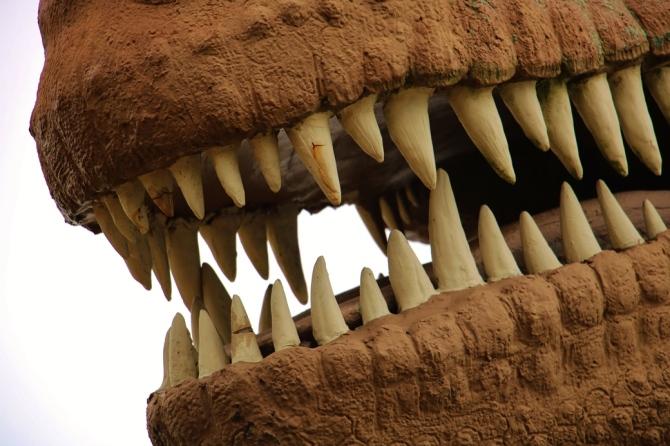 sinclair-texas-dinosaur-rex7
