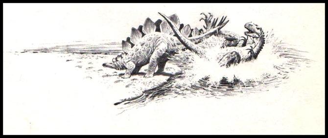 stegosaurus-fight
