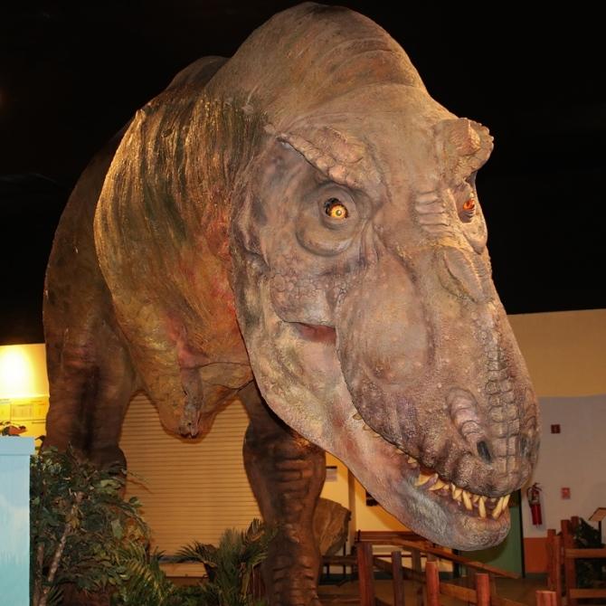 tyrannosaurus-rex1