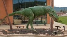 "alt=""Rocky Mountain Daspletosaurus"""