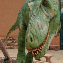 "alt=""Rocky Mountain Daspletosaurus"""