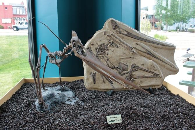 Pterasaur
