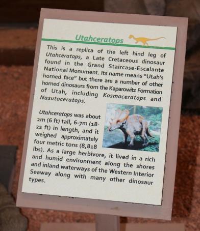 utahceratops-1