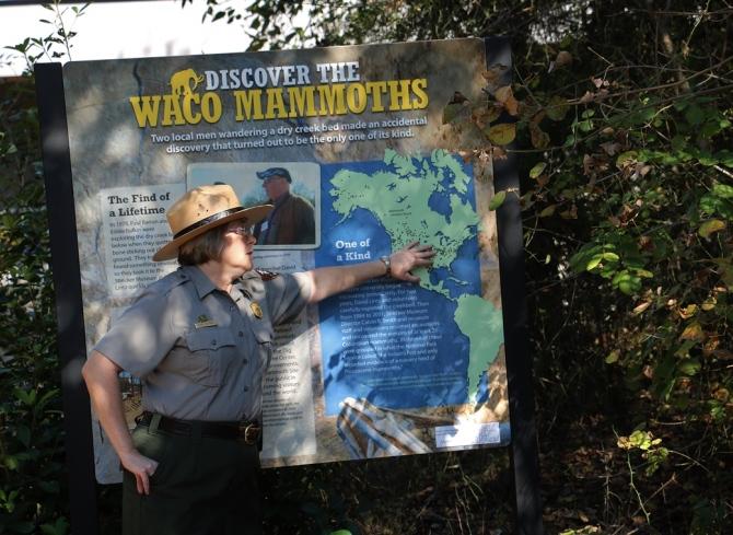 alt = waco-mammoths