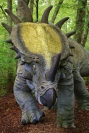 3 Styracosaurus