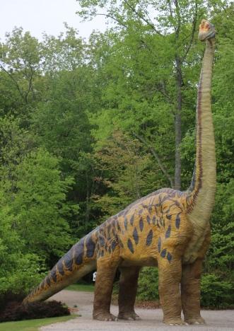Brachiosaurus 1