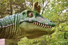 chinese dinosaur
