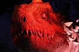 Indominus Rex 5