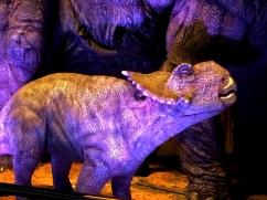 Pachyrhinosaurus JURASSIC WORLD 4