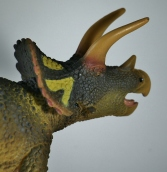 Safari Ltd. 2018 Triceratops 11