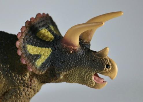Safari Ltd. 2018 Triceratops 4