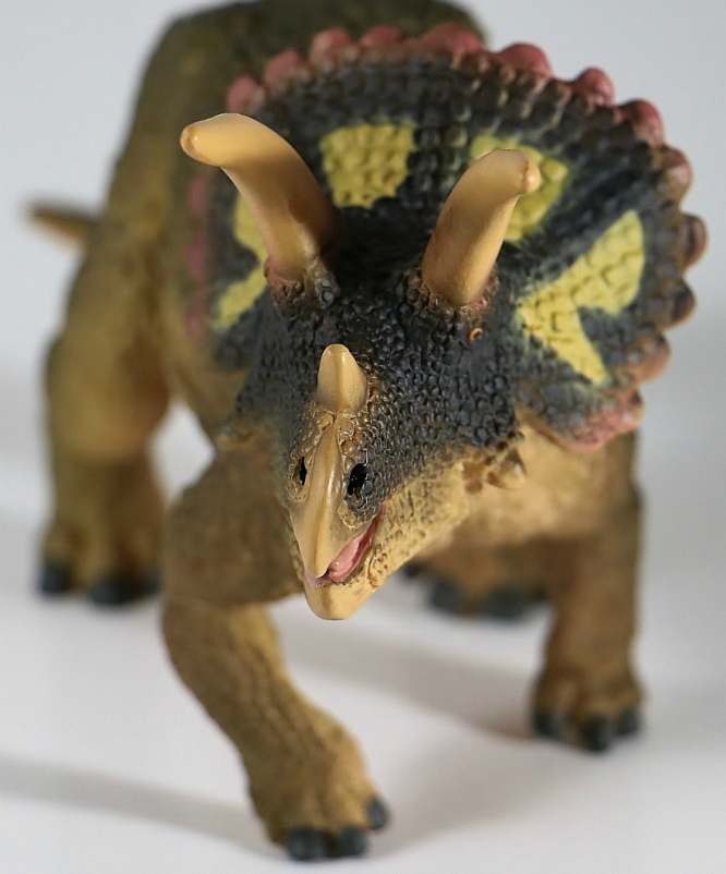 Safari Ltd. 2018 Triceratops 5