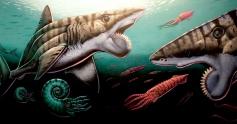 Buzzsaw Shark Mural