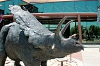 Dinosaur New Mexico 4