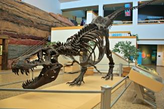 Stan T-Rex New Mexico 3