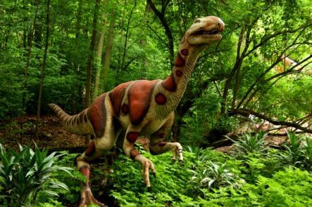 Milwaukee-Zoo-Elaphrosaurus-3
