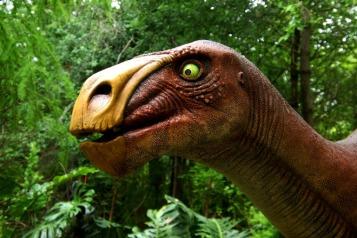Milwaukee-Zoo-Iguanodon-3