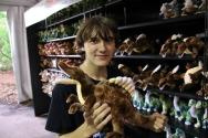 Spinosaurus-Plush