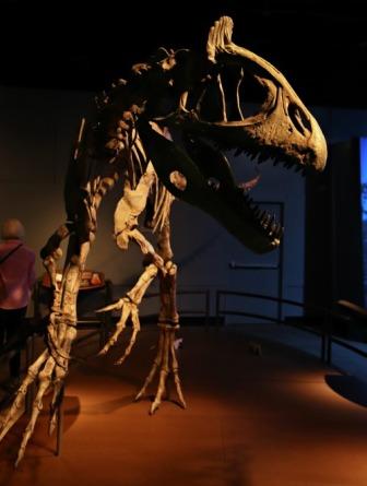 Arctic-Dinosaur-Exhibit-Cryolophosaurus-5