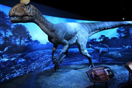 Cryolophosaurus-Replica-1