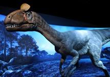 Cryolophosaurus-Replica-2