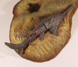 PNSO Spinosaurus Sawfish 2
