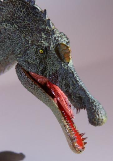 PNSO Spinosaurus Teeth