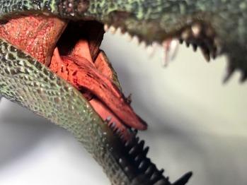 PNSO Spinosaurus Tongue 2